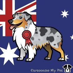 Best in show cartoon Australian Shepherd.  #aussie #australianshepherd #shepherd #dogs #dog #cutedog #petlover #pets #pet #doglover #cartoon #australian #australia
