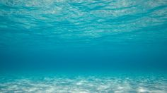 images download underwater backgrounds