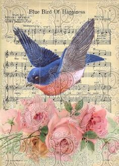 May the Blue bird of Happiness Fly up your nose ❀⊱╮
