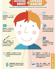 Right brain, left brain – Education Subjects French Teacher, Teaching French, Brain Gym, Right Brain, French Lessons, French Class, Psychology Facts, Behavioral Psychology, Color Psychology