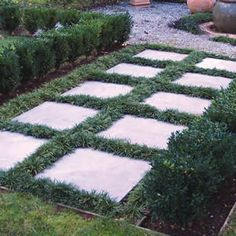 Dwarf mondo grass love it to fill between pavers! Apparently takes a beating too. Google Image Result for http://dwarfmondograss.net/wp-content/themes/ad-flex-niche/images/dwarf-mondo-plants.jpg