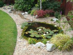 Pond Design Warwickshire, Swimming Ponds Staffordshire, Pond Landscapers Warwickshire, Water Garden Design Staffordshire, Aqua Landscape Design