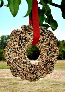 Make a birdseed wreath, I especially love this idea for the kids to help make for Grandmothers. We have had a ton of feedback on this project, and a lot have made the wreaths little with mini bundt cake pans, or even use old butter tubs, with empty toilet paper rolls in the center.