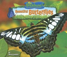 Beautiful Butterflies, No Backbone! The World Of Invertebrates By Meish Goldish, 9781597165877., Literatura dziecięca <JASK>