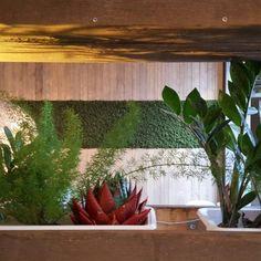 Mose vegg fra WALL-IT! Restaurant, Wall, Plants, Lounge, Airport Lounge, Restaurants, Lounges, Plant, Living Room