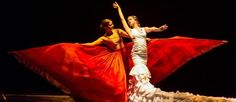 Dia Del Flamenco to be celebrated today across Andalucia :http://www.theolivepress.es/spain-news/2016/11/16/dia-del-flamenco-to-be-celebrated-today-across-andalucia/