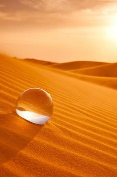drop of water on orange sand dunes. Coffee And Cigarettes, Orange Aesthetic, Water Droplets, Glass Ball, Crystal Ball, Macro Photography, Desert Photography, Belle Photo, Orange Color