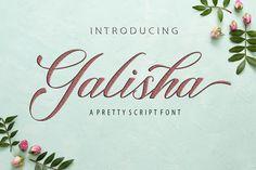 Galisha (Font) by Romie Creative · Creative Fabrica Handwritten Fonts, Calligraphy Fonts, Script Fonts, All Fonts, Modern Calligraphy, Signature Book, Microsoft Word 2010, Character Map, Beautiful Fonts