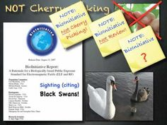 Wi - Fi Dangers. Science 101 Cherry Picking & Black Swans...