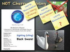 Wi - Fi Dangers. Science 101 Cherry Picking & Black Swans...