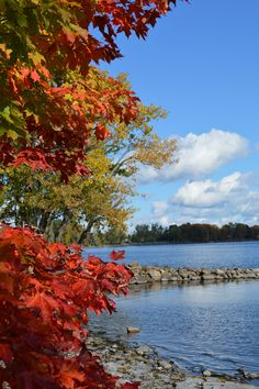 Lake Champlain ( Vermont side)