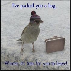 #Winter, your bag is packed. Please leave and don't come back to #Minnesota till end of November.