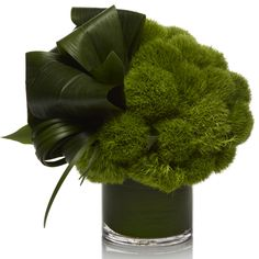 Green contemporary bouquet with dianthus green trick (kind of carnation) and Aspidistra Loops