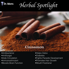 Cinnamon has been held in high regard for thousands of years in many different civilizations, not only as a delightfully fragrant cooking ingredient, but also for its medicinal uses.