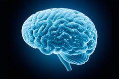 Obraz przedstawia niebieskim mózgu.