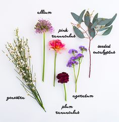 How to Make Mini Bouquets | Oh Joy!