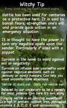 witchy tips - Google Search