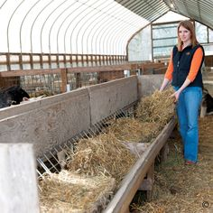 1000 Images About Barn Projects On Pinterest Goat Pen