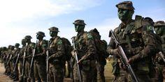 'É ilusão pensar em governo militar como forma de combate à corrupção', diz Dulce Pandolfi http://controversia.com.br/5698