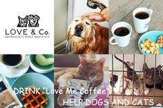 """コーヒーを飲んでイヌネコを救おう!をモットーに掲げるBuddy Coffeeが、この春、一般社団法人LOVE & Co.として生まれ変わります。Buddyの設立スタッフによって、シェルターでの保護活動を中心とする新ブランド""""Love Me Coffee""""として再出発します。"""