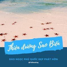 Đảo ngọc Phú Quốc từ lâu làm xiêu lòng du khách bởi biển xanh, gió mát, hoàng hôn tuyệt đẹp. Nhưng đã đến, bạn sẽ phát mê bởi Rạch Vẹm sở hữu thiên đường sao biển tuyệt đẹp, ngỡ ngàng như một vùng biển hoang ở Châu Âu...