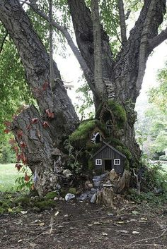 Little faerie house