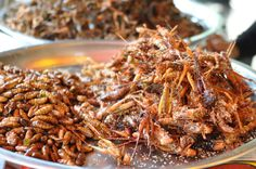 The Rise Of The Incredible Edible Insect | Popular Science - START-UPS ARE MARKETING AN UNLIKELY NEW PROTEIN. IT'S NUTRIENT-RICH, ALL NATURAL, AND SIX-LEGGED.