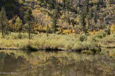E Sierra Lundy Lake