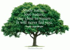 Love Frank Lloyd Wright's quote about nature. It inspired me to spend most of the day outside! http://www.thesilverpen.com/2013/05/19/love-of-nature/