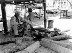 Seminole elder Billy Bowlegs III cooking over a fire (1958).   Florida Memory