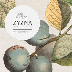 Żyzna is a small vegan bistro in the heart of Wrocław, born out of a mission for better eating. It serves an amazing foodin cozy atmosphere, with a new menu every week. La Marmite, Behance, Logo Restaurant, How To Eat Better, Vegan Restaurants, New Menu, Layout Design, Packaging Design, Branding