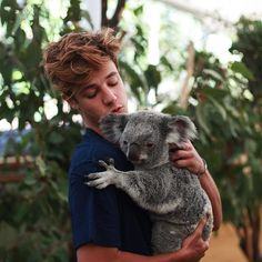 Thank you so much @lonepinekoala ! The #MagconFamily had so much fun meeting your koalas #magcondownunder @camerondallas