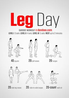 Leg Day - Darebee Workout. [ Well, it's a start but I wouldn't call it a leg…