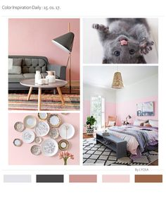 BABY PINK & GRAY