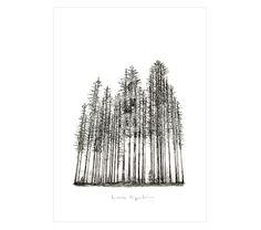 FOREST. Reproducción digital firmada y seriada de #lauraagusti. Medidas:29,7 x 21 cm.(A4). #print #ilustration #ilustracion #dibujo #drawing #Art #Barcelona