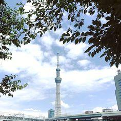 浅草のロペス (@lopez_hotelmondayasakusa) • Instagram photos and videos Tokyo Skytree, Cn Tower, Photo And Video, Videos, Building, Photos, Travel, Instagram, Pictures
