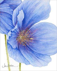 Jan Harbon - Los motivos florales a gran escala de esta artista británica me…