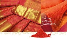 This month, join Kanakavalli and splash a different colour every day with vibrant silk saris!  This energetic orange sari creates cheerful vibrations and is a perfect start for a bright monday morning! May this season of colours bring joy and cheer to you! ! Love Orange or know someone who does ? Tag them in this post!