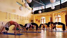 Yoga Provider in Village Dharamkot, Dharamsala Himachal Pradesh - HIYC !!