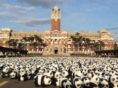 2014 Pandas on Tour in Taipei. Yeah! @ 中華民國總統府 Office of the President, Republic of China (Taiwan)