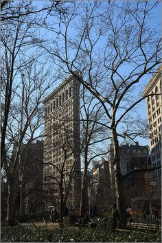 New York City Impressions during winter time – Manhattan – NYC - old Flatiron Building with winter trees