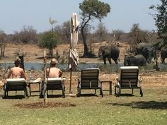 Kruger National Park, National Parks, Private Safari, Out Of Africa, Big 5, Outdoor Furniture Sets, Outdoor Decor, Golf Courses, World