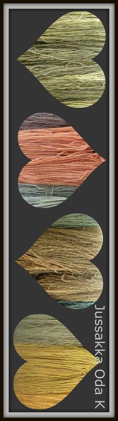 Kasvivärjättyjä lankoja <3 Natural dyed #jussakka #kasityokortteli #wool #knitting https://www.facebook.com/pages/JUSSAKKA-Oda-K/173696896121402