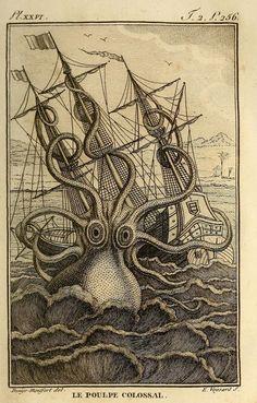 "The giant octopus from ""Histoire naturelle"", Paris, 1802-05"