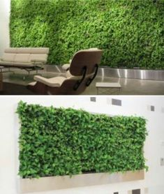 How Green Walls Work: Irrigation