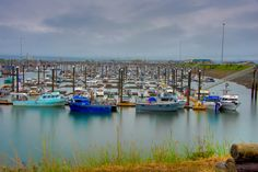 Rainy day at the harbor in Homer, Alaska.  Homer, Alaska Chamber of Commerce.