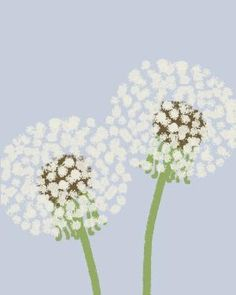Items similar to Fine Art Print.  Dandelion Puffs.  September 1, 2011. on Etsy by audrey