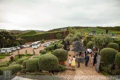 013_mudbrick vineyard wedding