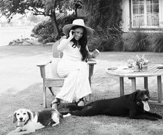 """michelle on Twitter: """"meghan & the tig vibes are back 😭… """" Harry And Meghan News, Kate And Meghan, Prince Harry And Megan, Gloria Steinem, Prince Albert, Michelle Obama, Joe Biden, Sonia Rolland, Dogs"""