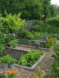 Image result for pathway in vegetable garden